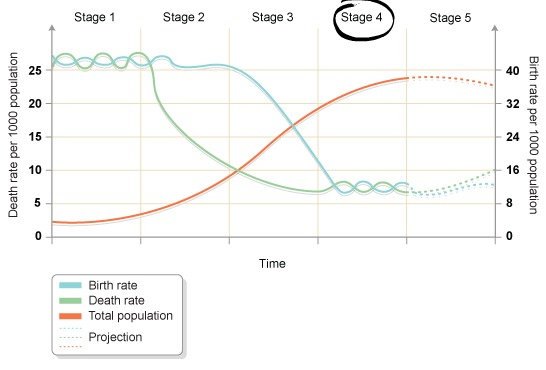 germany demographic transition